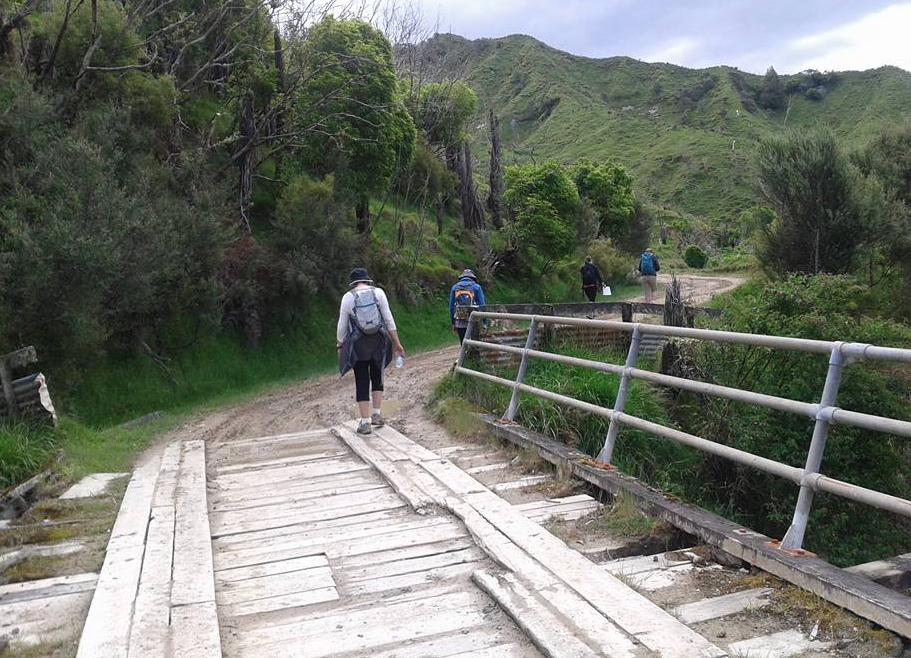 Hiking/Walking